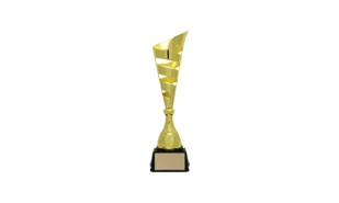 Gold Vito Cup Trophy: 16-1/8""