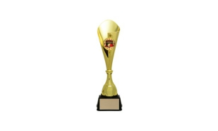 Gold Bruno Cup Trophy: 16-3/8""