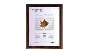 "10 1/2 x 13"" Cherrywood Laminate Certificate Holder"