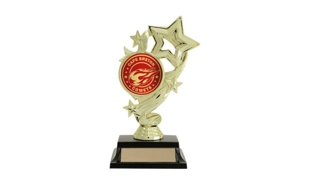 "Star Banner Trophy with 2"" Insert Holder: 7"""